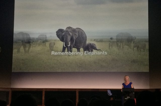 remembering-elephants-2