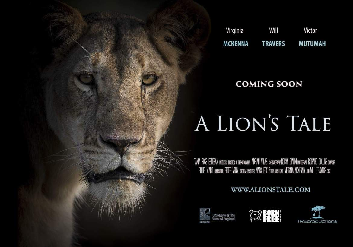 A Lions Tale film by Tania Esteban