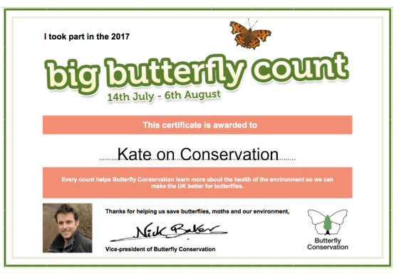 big butterfly count certificate