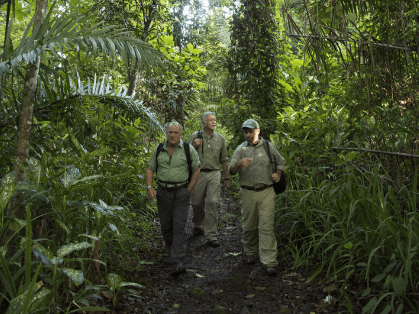 Jaguar journey: Alan Rabinowitz and saving a species