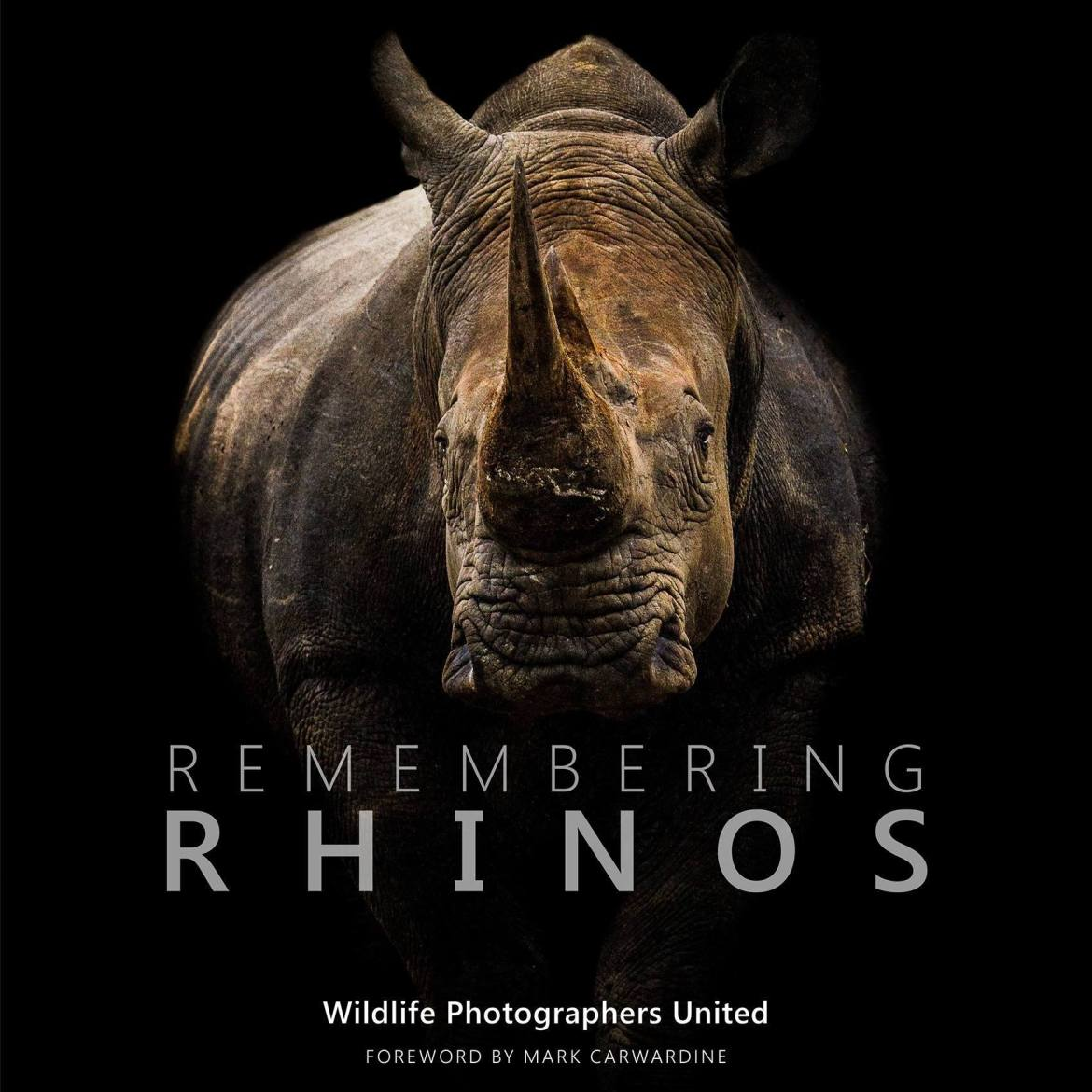 Remembering Rhinos launch: Special interview with Founder Margot Raggett