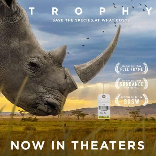 trophy film poster