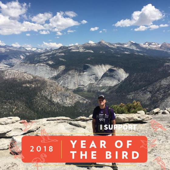2018 year of the bird adventure Ed