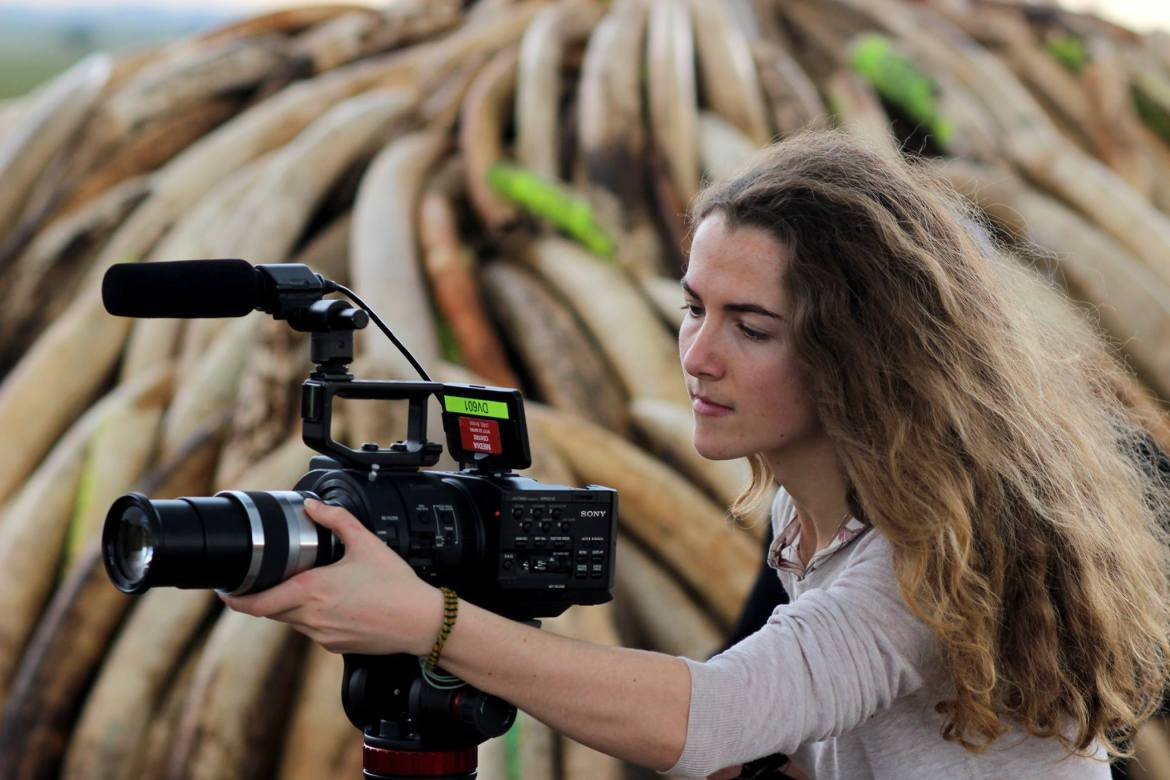 Tania Esteban chats about her role as a Digital Researcher for BBC's Big Cats, Planet Earth II and Blue Planet II
