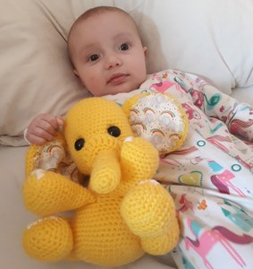 Baby-Ada-And-consewvation-elephant-design-yellow