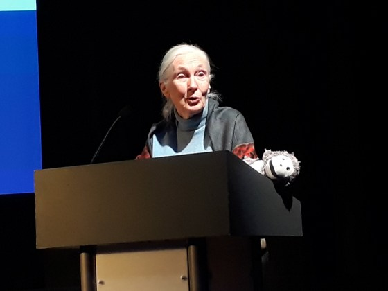 Jane Goodall speaks at Roots and Shoots Awards 2018