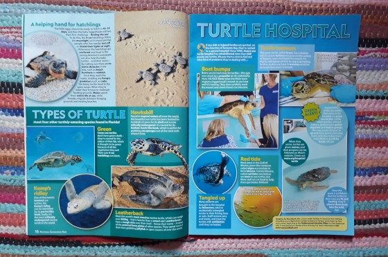 turtle hospital feature in Nat Geo Kids magazine