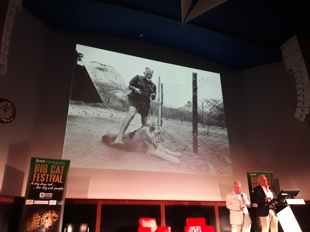 John Rendall shows George Adamson's photo at Christian the lion's legacy talk at Big Cat Festival