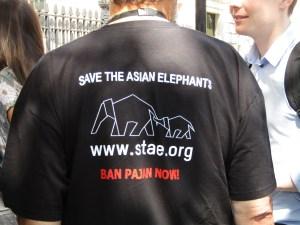 STAE t-shirts ban Pajan
