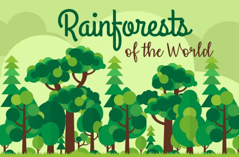 Rainforests of the World: Guest post and infographic by Todd Smith
