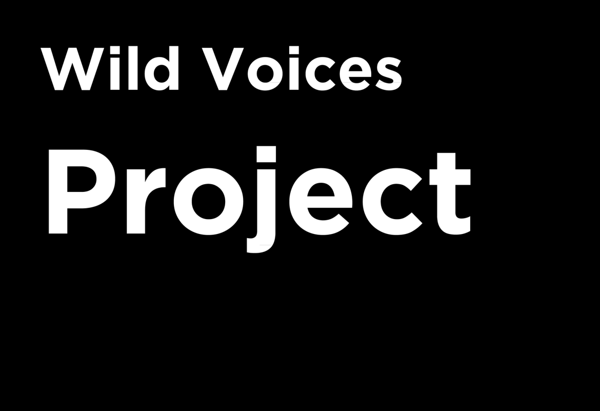 Wild Voices Project: the podcast for nature lovers