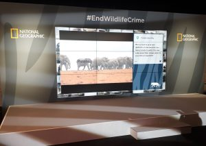 Nat Geo end wildlife crime screens at Illegal Wildlife Trade conference 2018