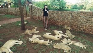 Beth Jennings at lion breeding facility