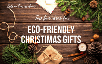 Kate-on-conservation-top-5-eco-friendly-gift-ideas