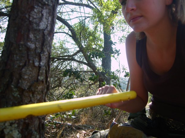 Tree-removal-Kate-On-Conservation