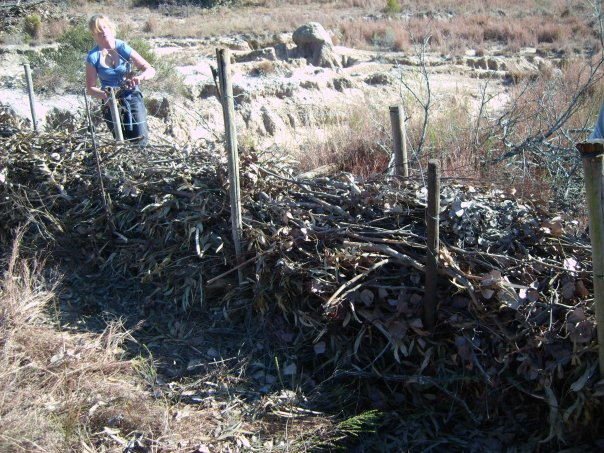 organic-fencing-made-from-sticks-shamwari-game-reserve