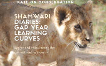 kate-on-conservation-learning-about-the-canned-hunting-industry