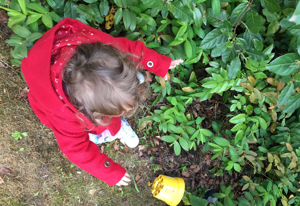 Bug Safari: A fun way to get children outdoors this summer