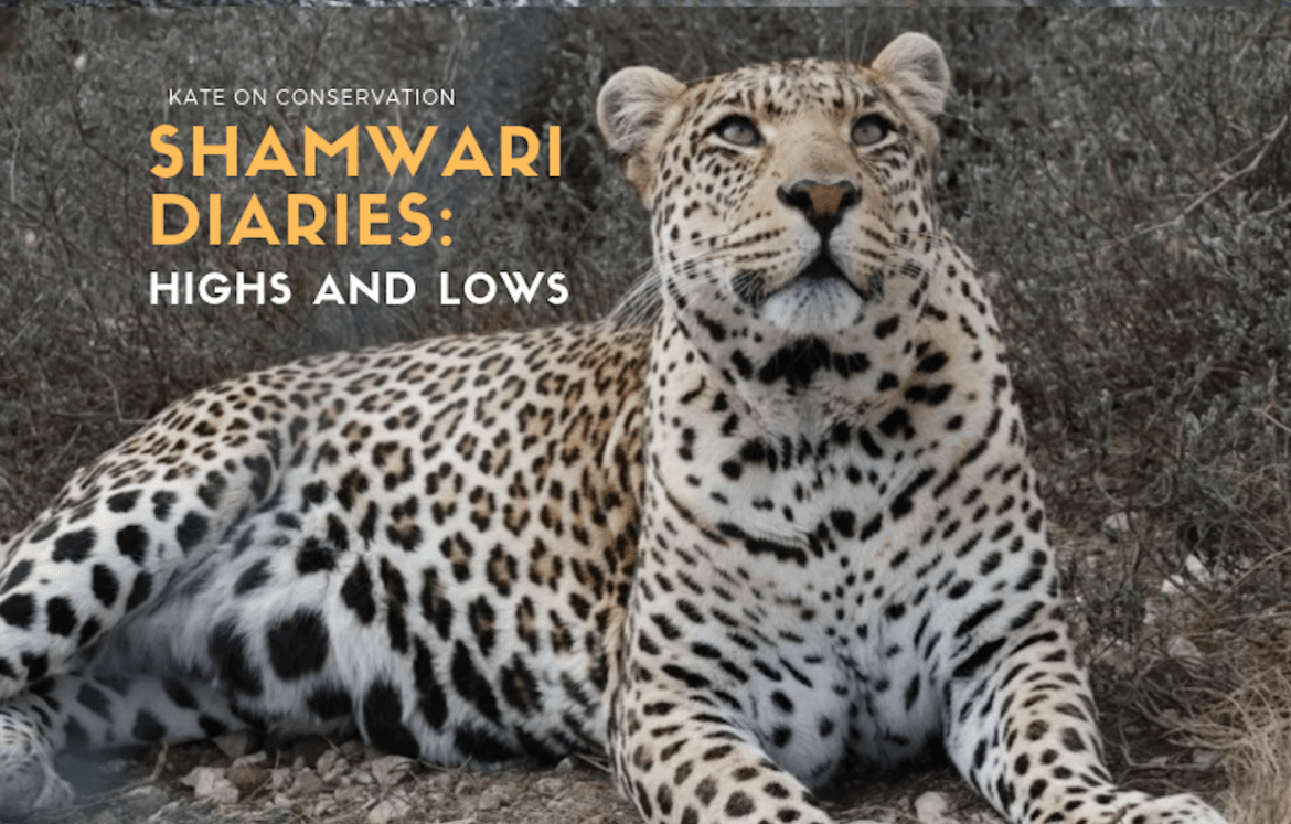 Shamwari-diaries-title-card-Kate-On-Conservation