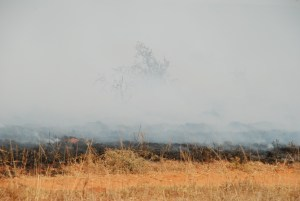 Controlled-Burn-at-Samwari
