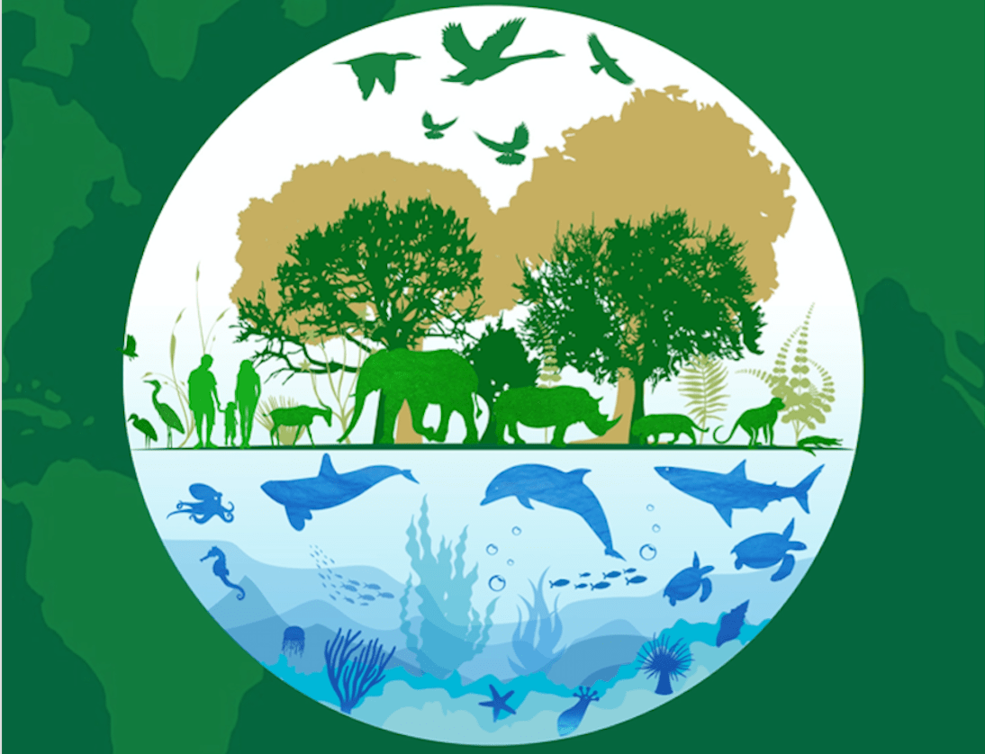 world-wildlife-day-logo-image