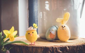 Easter-Egg-Display-with-chick