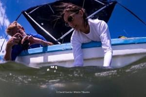 Hammerhead-sharks-expert-Ilena-Zanella-releasing-a-young-hammerhead-shark
