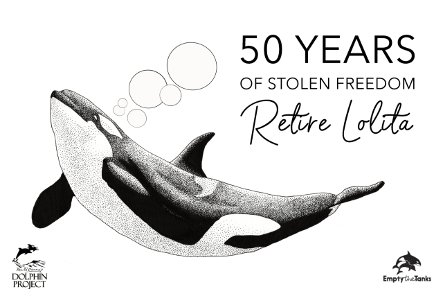 Retire Lolita the orca
