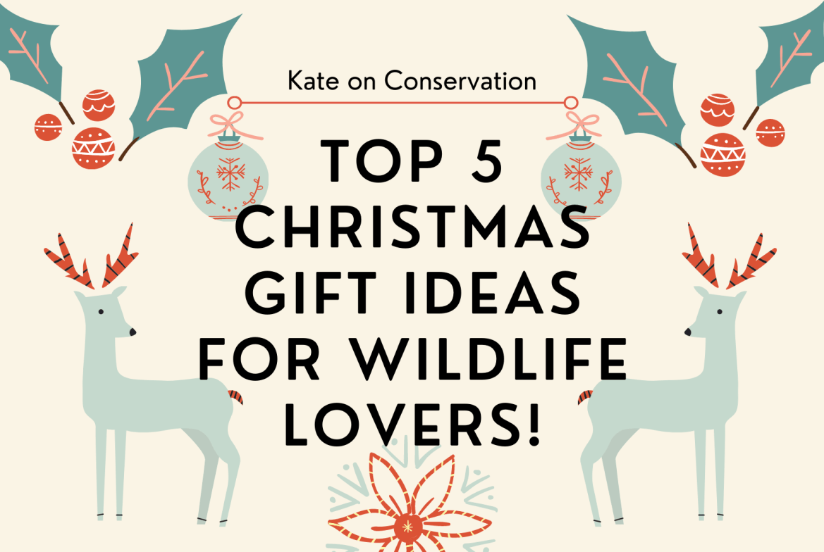 Top 5 Christmas gift ideas for wildlife lovers!