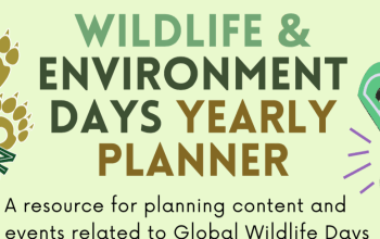wildlife days yearly calendar preview