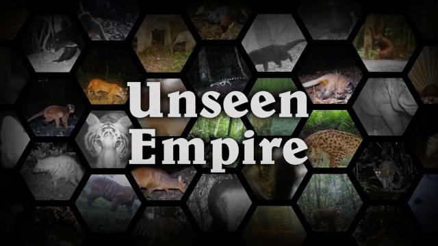 unseen empire trailer thumbnail