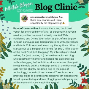 How to be a successful wildlife blogger - Resources for blogging