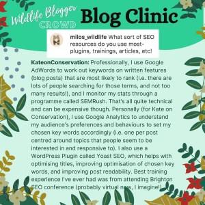 wildlife blogging SEO tips - SEO plugins