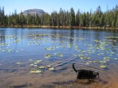 4 Lakes Basin 223