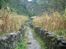 Nepal 2008 018