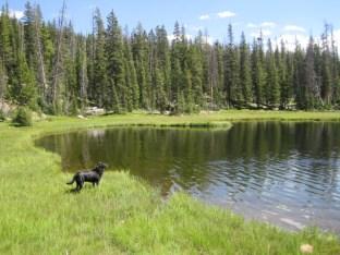 Uintas Rock Creek Basin Sept 2011 065
