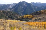 Kessler Peak and Mill A's fall colors in the foreground