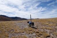 CDT Monarch Pass to Wolf Creek Pass