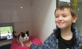 Our family visits Cats Protection
