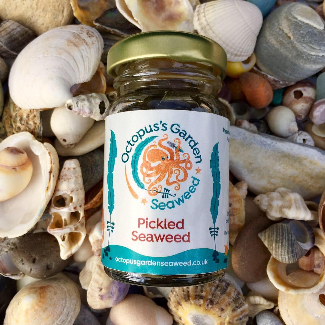 Seaweed business