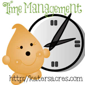 Build Your Brand with Effective Time Management by KatersAcres