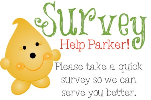"""Polymer Clay Survey 