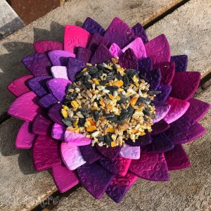 Flower Bird Feed by Katie Oskin