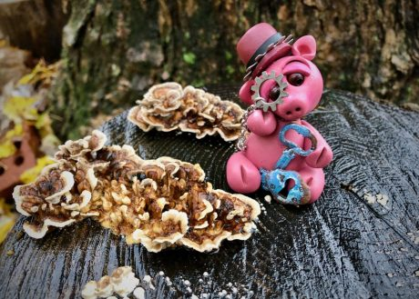 Steampunk Pig by KatersAcres