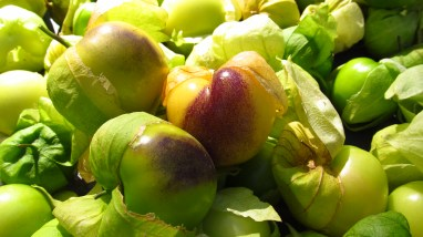 Tomatillas that are shades of green, yellow, and purple