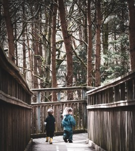 Children walking along a tree top walk
