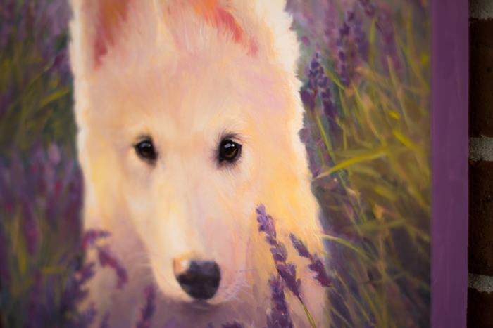 oil painting, Puppy, Purple, Shepherd, White, Canine, Cute, Lavander, Dog, Husky, Nature, Oil original, oil, realistic, impressionistic, painting for sale, sold, fine art, buy a painting, wall art, gift, christmas, artist, painting art, portrait artist, portrait, contemporary painting, painting gallery, custom art, custom paintings, usa, america, american art, red, Kate Tova artist, canvas, christmas gift, anniversary, new year, birthday present, unique, exclusive, expensive, luxurious, living room, guestroom, Kate Tova, wedding gift, Valentines day gift, hand painted, art for dining room, guest room, living room, bedroom, canvas print, print, painting on canvas, gift for dog lover