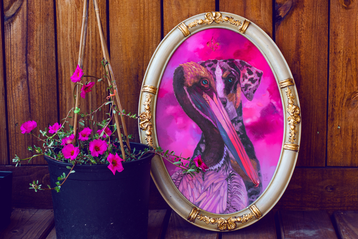 pelican, catahula, art, painting, oil painting for sale, buy, present, gift, animals, birds, dogs, louisiana, state animals, state bird, pink, oil on mirror, contemporary modern art for sale, realistic
