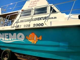 The Nemo