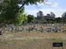 The Island's Cemetery